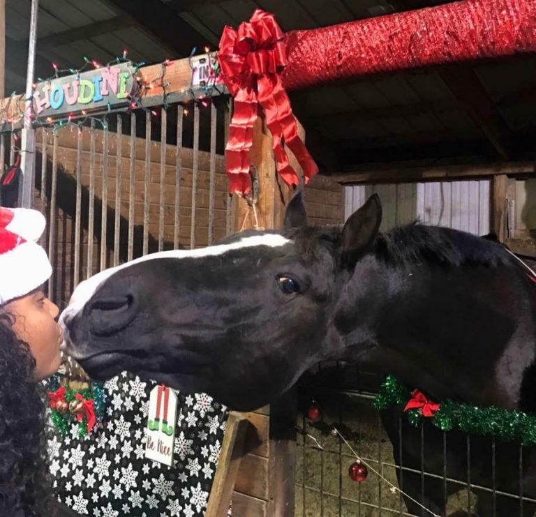 Houdini Christmass Kiss