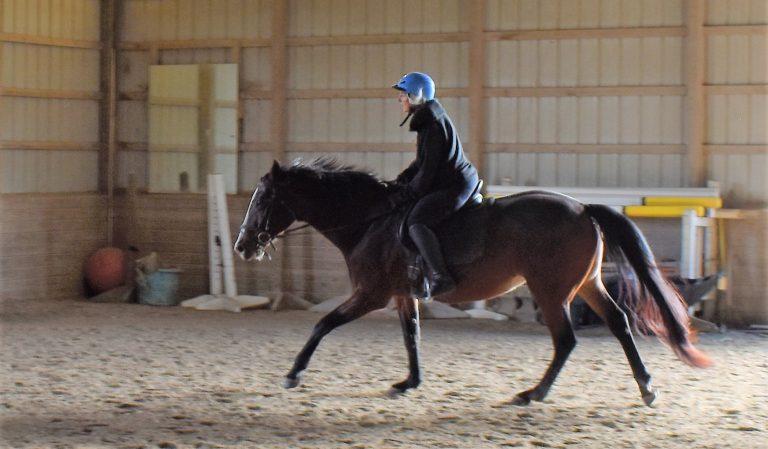 Anstar riding