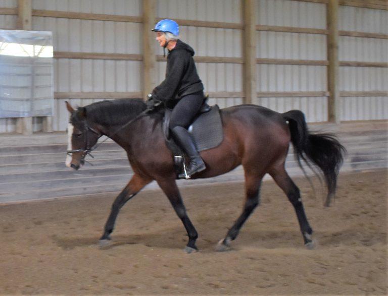 Anstar riding_3