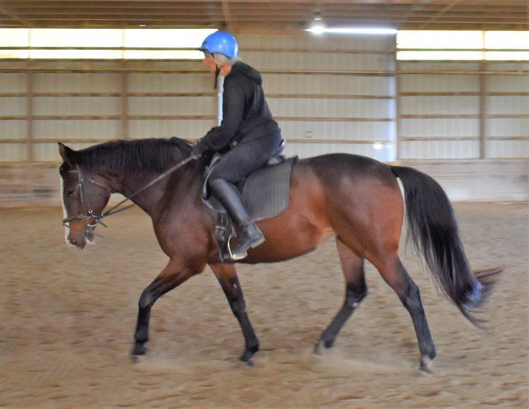 Anstar riding_4