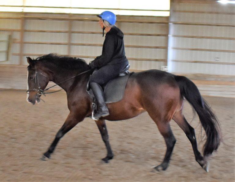 Anstar riding_5