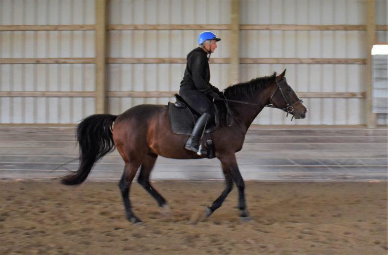 Anstar riding_6