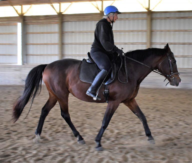 Anstar riding_7