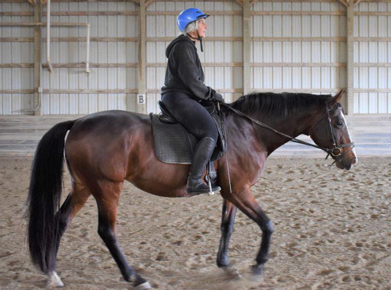 Anstar riding_8